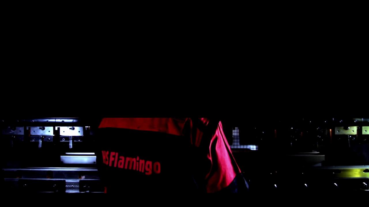 HS Flamingo Aquaflam_h264[12-55-11]